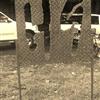 H9 in steel (Deborah Williams)