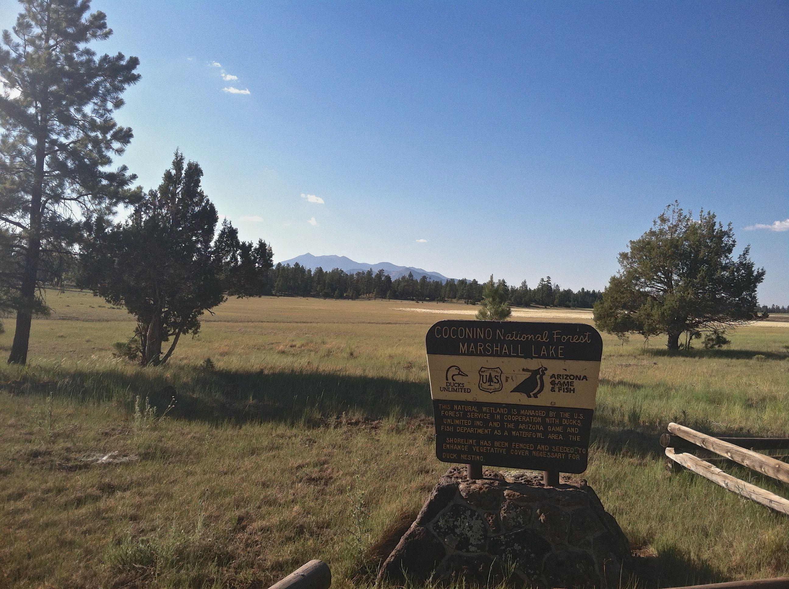 mormon lake Mormon lake is a hiking adventure located in or near mormon lake, az enjoy & research mormon lake, arizona with trail guides, topo maps, photos, reviews & gps routes on trailscom.