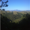 Views of Mount Diablo