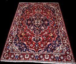 Finely Detailed Semi Antique Persian Bakhtiari 6.10x10.2