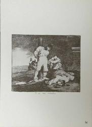 FRANCISCO GOYA, DESASTRES 15