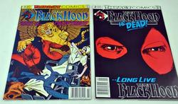 Black Hood Collectible Comic Magazines
