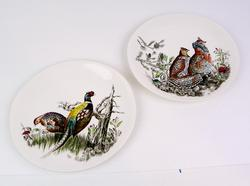 2 Vintage Johnson Brothers Game Bird Plates