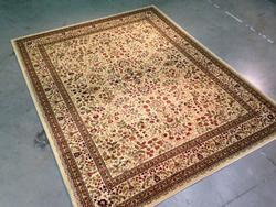 Classic Detailed & Intricate Traditional Area Rug 8x10