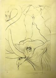 Rare Salvador Dali Signed Drypoint Etching