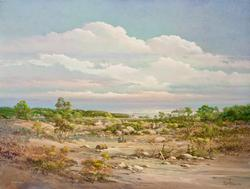 Beautiful original oil By Donald A Peters
