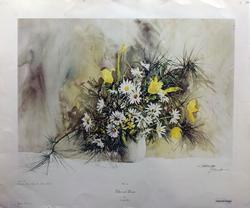 Carolyn Blish Color Impression on Paper