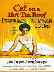 Vibrant Vintage Poster - Cat on a Hot Tin Roof
