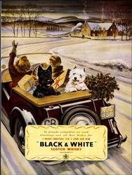 Lovely Vintage Poster - Black & White Scotch Whisky