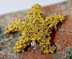 Beautifully Textured 18K Starfish Brooch