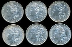 6 Diff. Lustrous Morgan Silver Dollars 1880-1901
