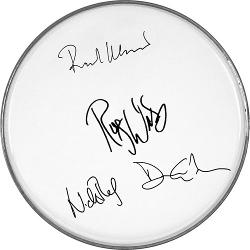 PINK FLOYD FENDER DRUMHEAD DAVID GILMOUR ROGER WATERS+