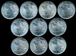 Lot of 10 Choice BU Peace Silver Dollars