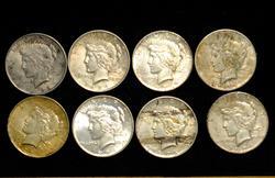 8 US Peace Silver Dollars, Circulated