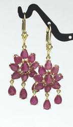 Stunning 6 Carat Ruby and 14kt Gold Earrings
