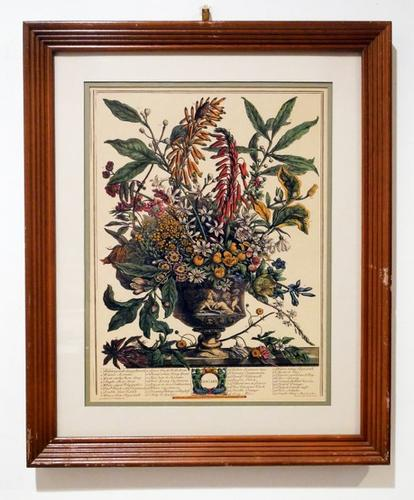 Beautiful Photogravure of flowers in a vase.
