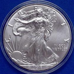 Choice Real Frosty 2016 Silver Eagle