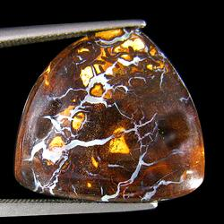 Gorgeous 18.32ct white crystal Koroit boulder Opal