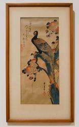 Vintage Peacock Japanese Woodblock Print