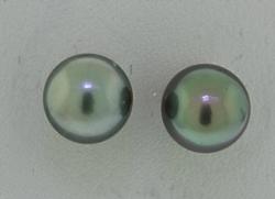 14kt Grey Tahitian Pearl Earrings