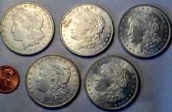 4 Uncirculated 1921 Morgan Dollars And a slider 1921 Morgan