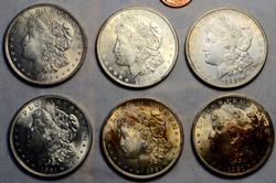 6 Assorted BU 1921 Morgan Dollars