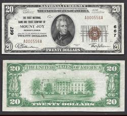 $20 1929 Mount Joy PA TYPEI Ch. 667 Great Color #000556