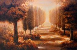 MG Park A Path Through the Trees
