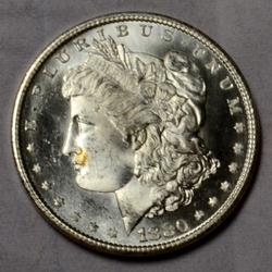 1880 S Choice BU Frosty White Morgan Dollar