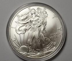 BU America Silver Eagle, 2010