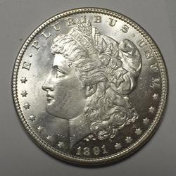Estate UNC 1891 Morgan Dollar