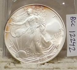2005 Silver Eagle, Uncirculated.