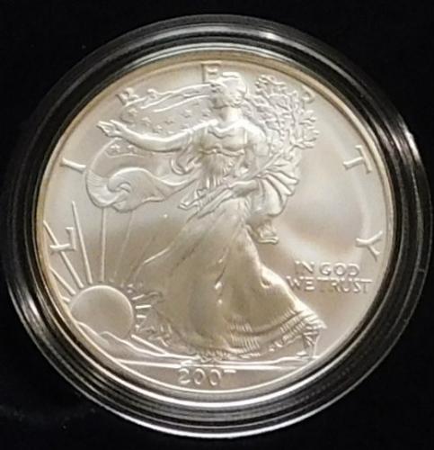 2007 Burnished Siver Eagle Unc - Mint box & Docum.