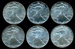 6 Diff Better Date  Gem BU $1 American Silver Eagles