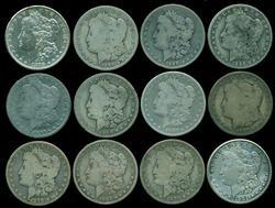 12 Assorted Morgan Silver Dollars. Well circulated