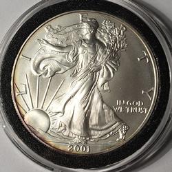 2001 American Silver Eagle $1