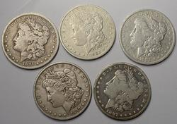 5 Cleaned or polished Morgans