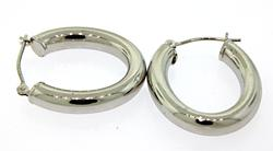 Trendy Oval Tube Hoop Earrings