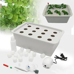 220V Hydroponic System Kit 12 Holes DWC Soilless Indoor