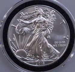 BU 2018 Silver Eagle
