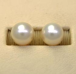 Lovely Pearl Post Earrings in Gold