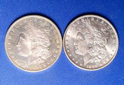 Flashy Pair of Morgan Silver Dollars