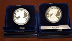 PAIR 2010 & 2011 PROOF SILVER EAGLES OGP