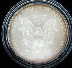 2007 1 Ounce Silver American Eagle Dollar Coin w/COA