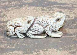 Leap Toad Natural Ivory Netsuke