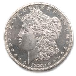 Choice Frosty White BU Slightly Cameo 1880 S Morgan Dol