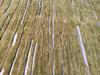 Hand Spun Magnificent Wool Designer Rug 5 x 8