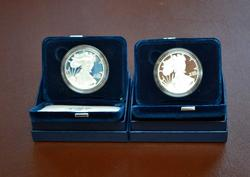 PAIR 2008 & 2010 PROOF SILVER EAGLES OGP