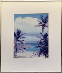 Limited Edition 1/92 Signed Barbados Photogravure