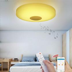 Music Ceiling Light Bluetooth Speaker Down Fixture Lamp